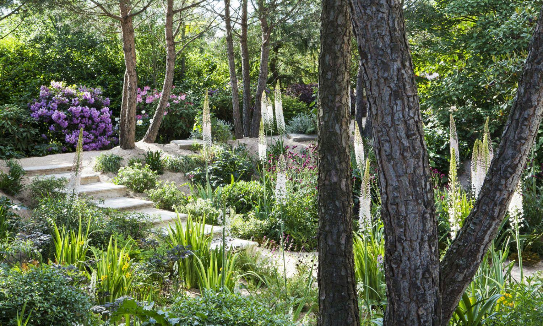 le jardin agapanthe visite d 39 un des plus beaux jardins de. Black Bedroom Furniture Sets. Home Design Ideas